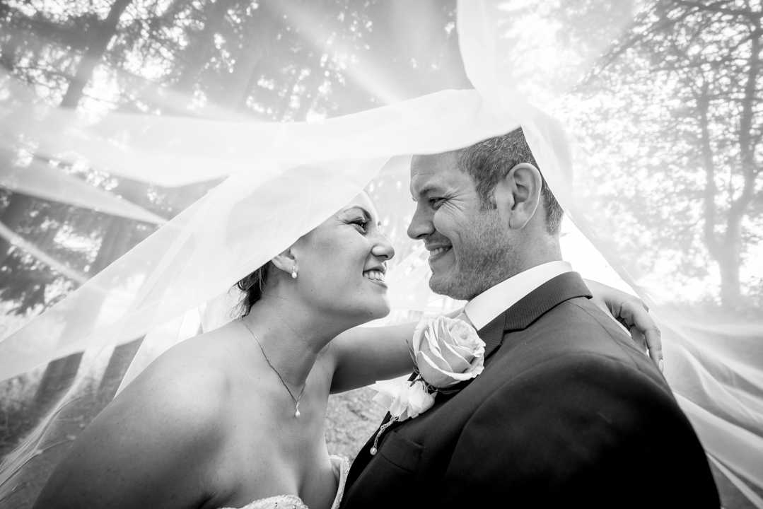 Pakke 2 - -Forlovelsesfotografering inntil 2 timer-Hel dag (inntil 12 timer fotografering-Alle filer levert digitalt-Eget web galleri-25x25cm album med 10 dobbeltsider inkludertPris: 26000,-