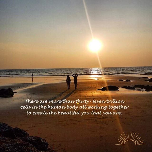 There are more than thirty-seven trillion cells in the human body all working to create the beautiful you that you are. That's thirty-seven trillion reasons to be grateful and work to make sure they get what they need. ✨ ✨ ✨ #lookafteryourself #selfcare #workplacewellness #wellness #wellnesscoach #wellbeing #gratitude #goodchoices #positivevibes #active #healthylifestyle #yourhealthmatters #mindset #wellnessworkspace #healthandwellness #healthandwellbeing #health #intention #bodypositive #mindandbody #makeithappen #essexbusiness #businessmotivation  #selfcarefirst #movement #inactivity #beactive #youmatter #thebody