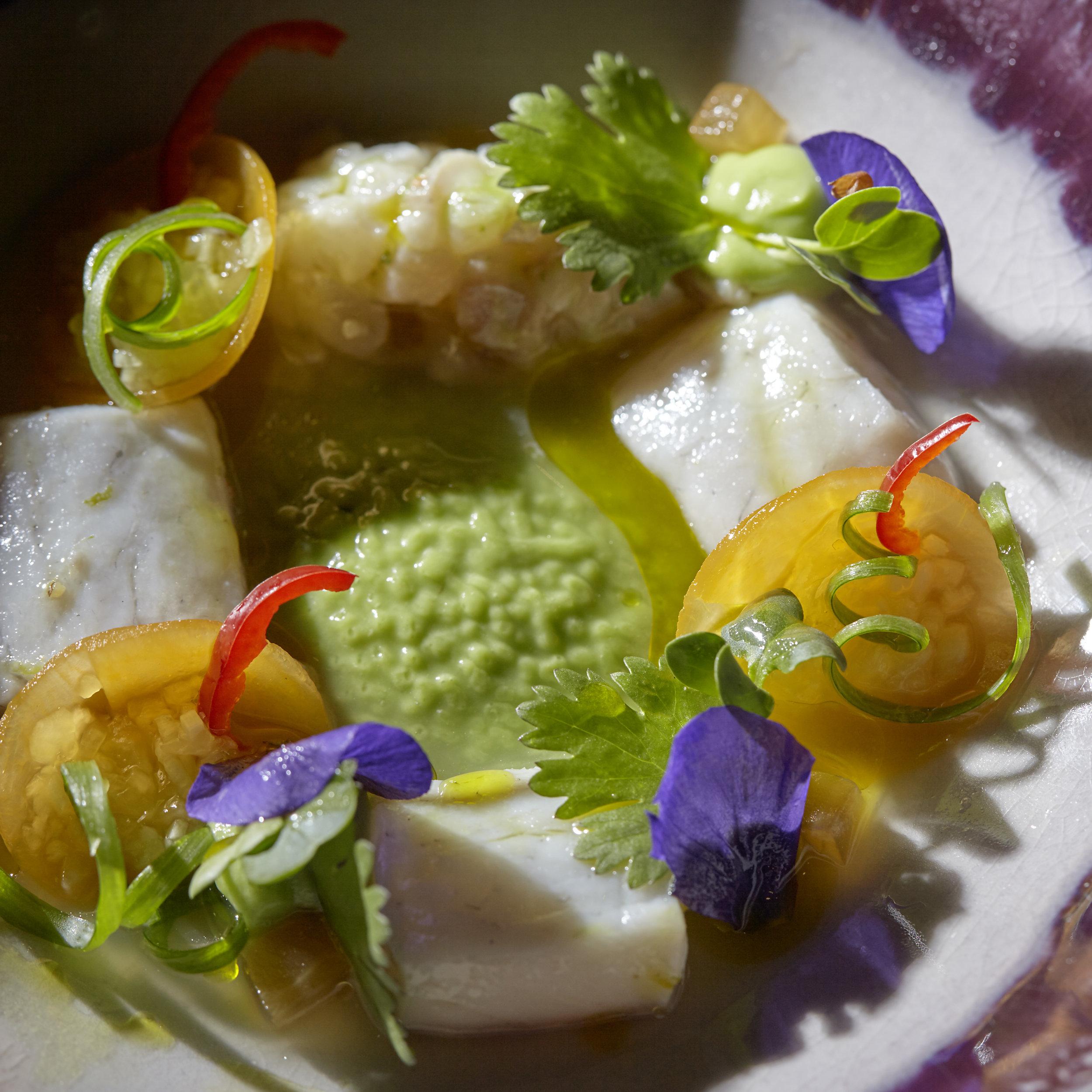 Michel van der Kroft   Ceviche van wilde zeebaars met avocado, pompoen en koriander