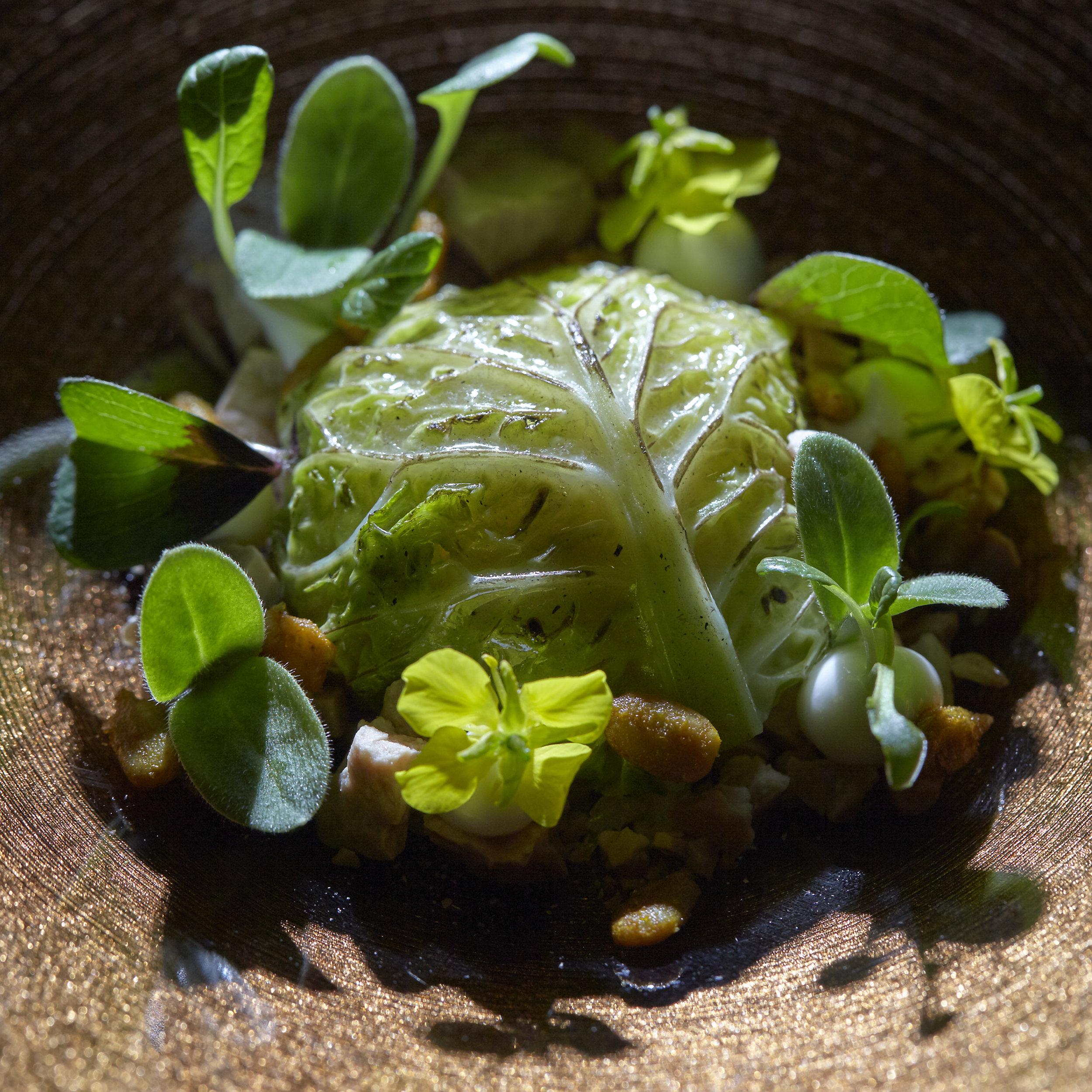 Maik Kuijpers   Ganzenlever met pittige Noordzeekrab, gemarineerd kappertjesblad en sap van wortel en magniola