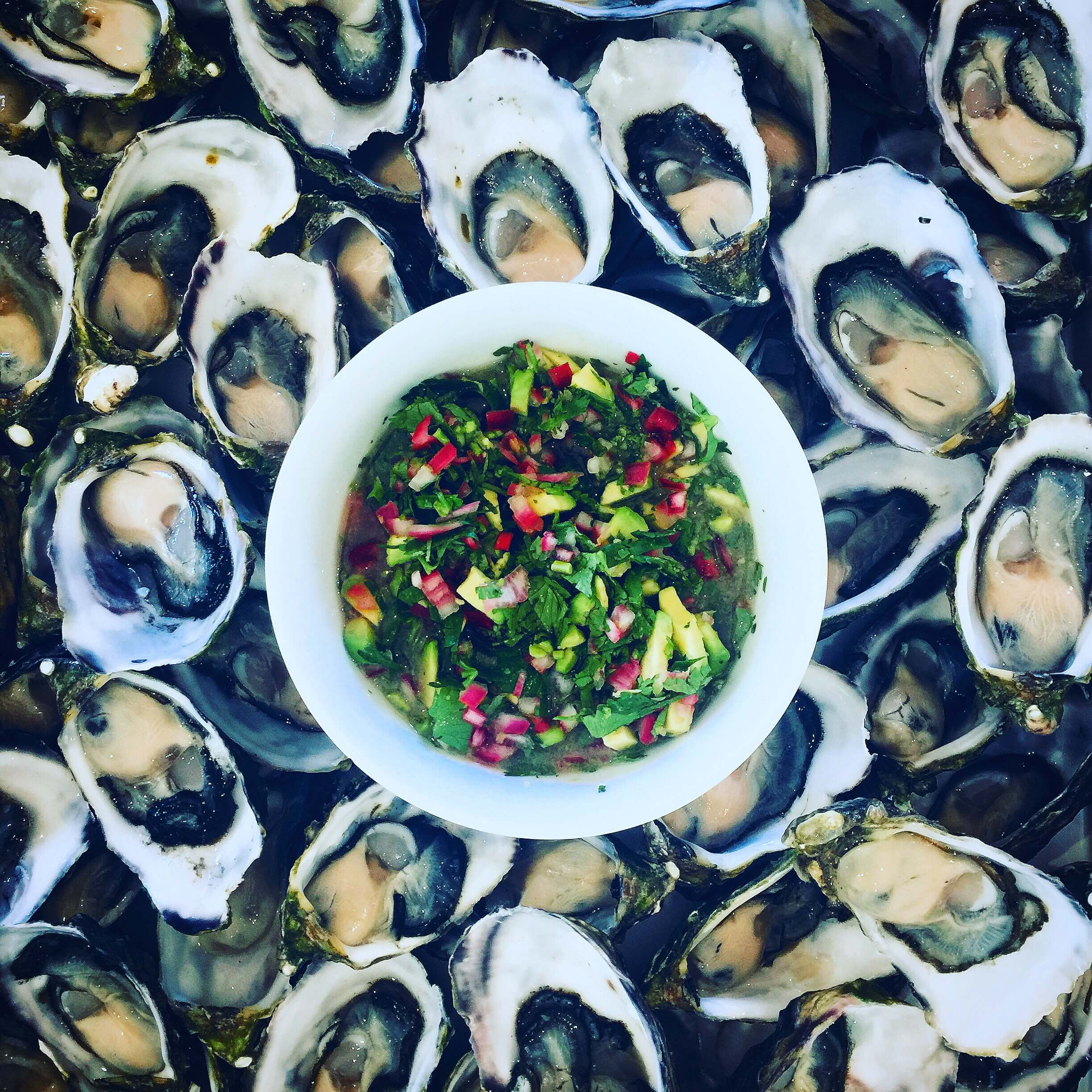 Food By Annabel - Food Consultant Oysters