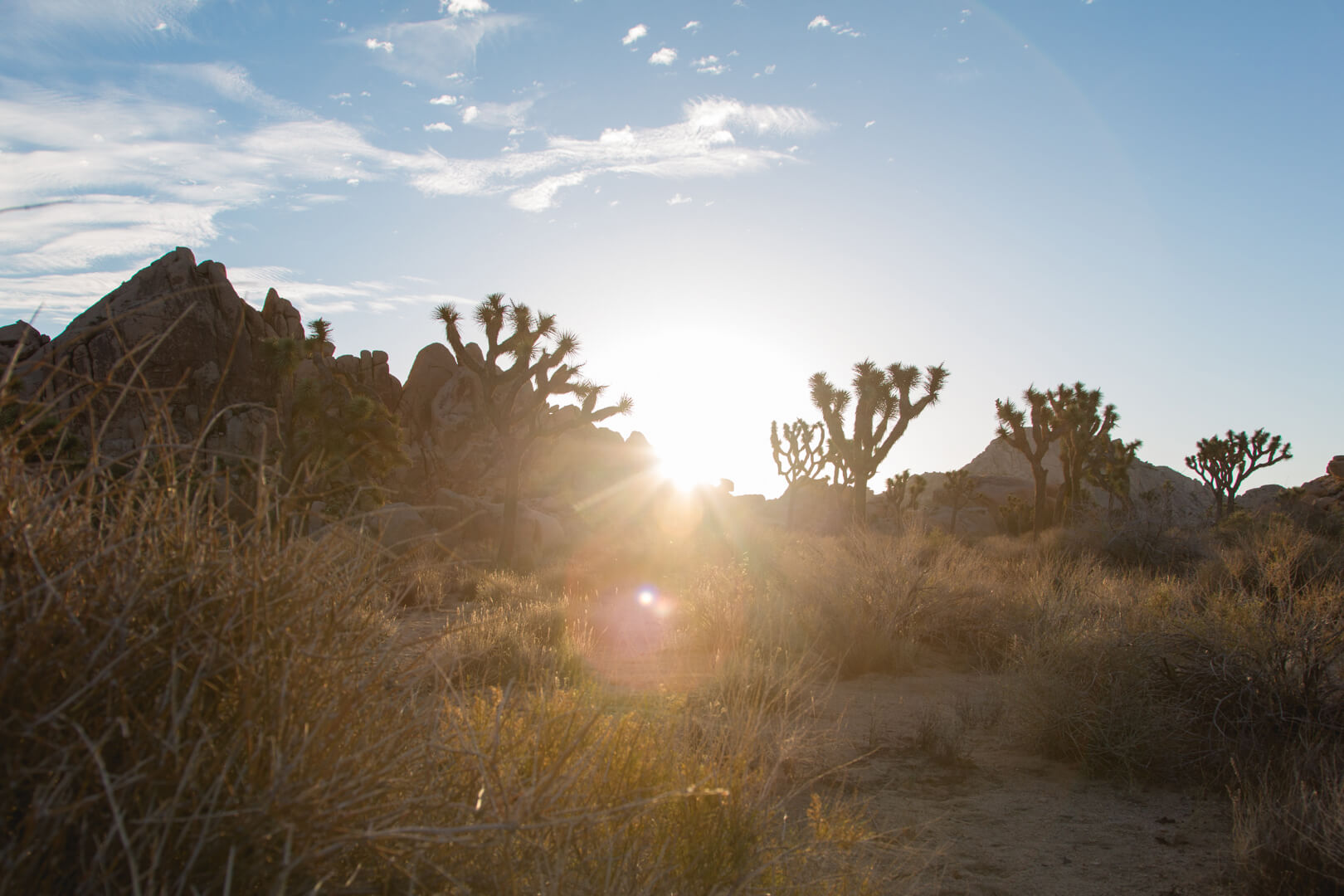 San Bernardino County Thumbnail.jpg