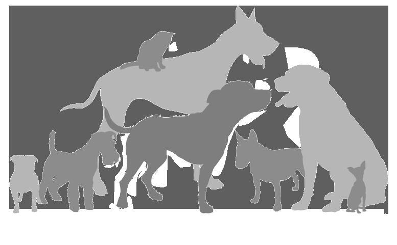 Tiny Tim Rescue Fund