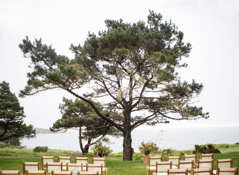 Timber-Cove-092-768x563.jpg