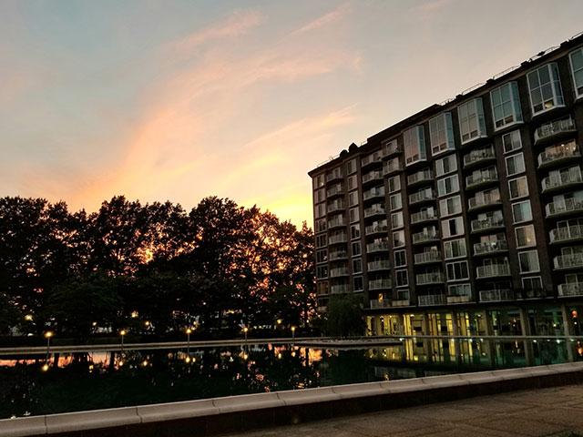 Night-Water-Garden.jpg
