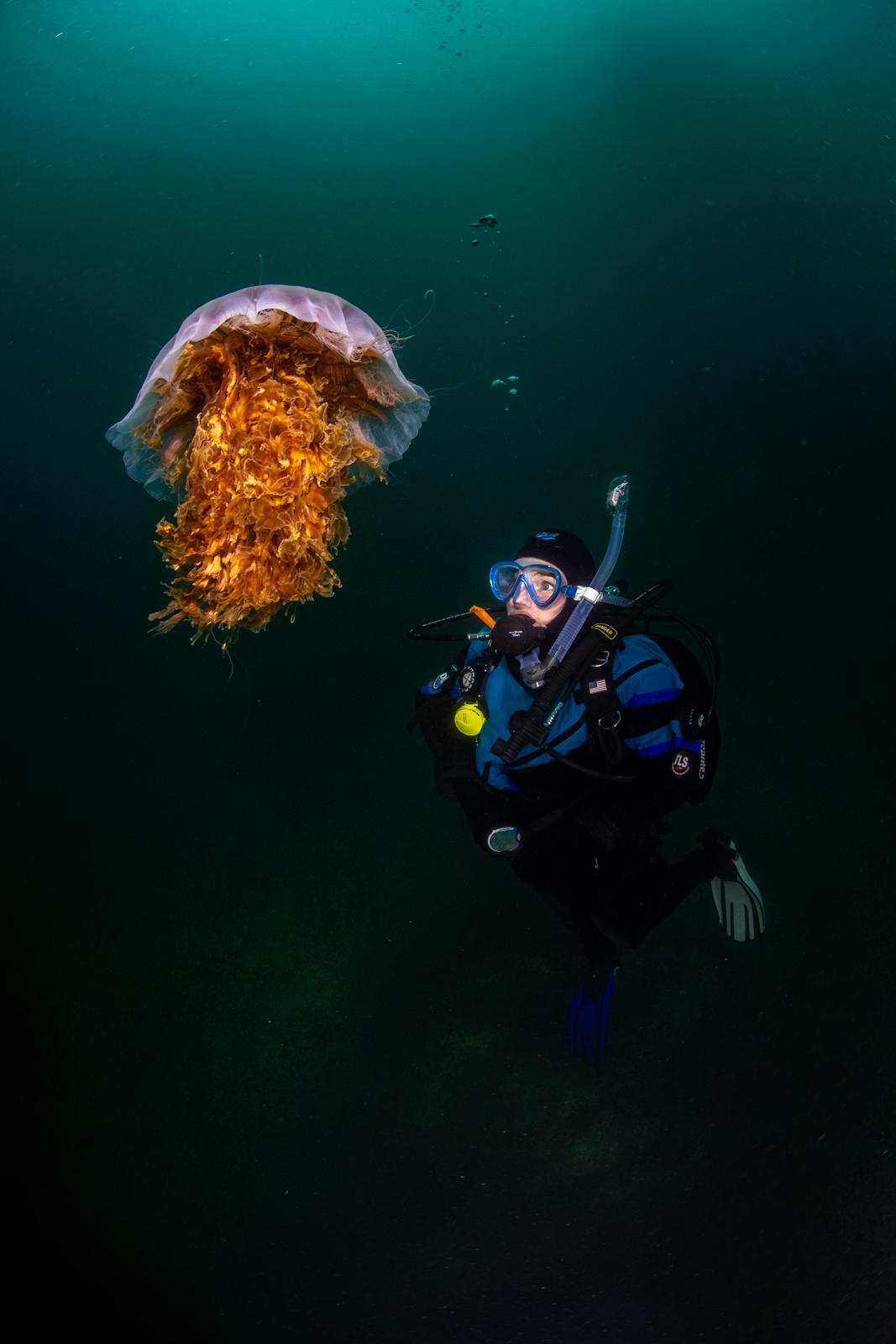 Annie Crawley Our Ocean And You Dive Team-5903.jpg