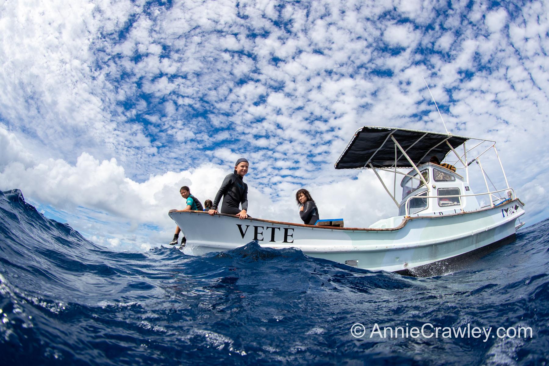 Tonga Humpback Whales Annie Crawley-9578.jpg