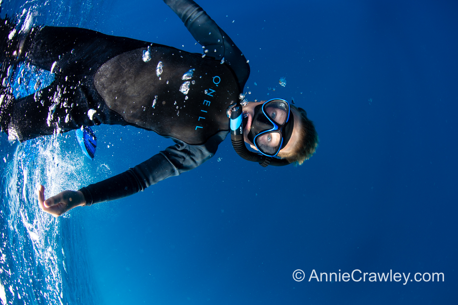 Tonga Humpback Whales Annie Crawley-9710.jpg
