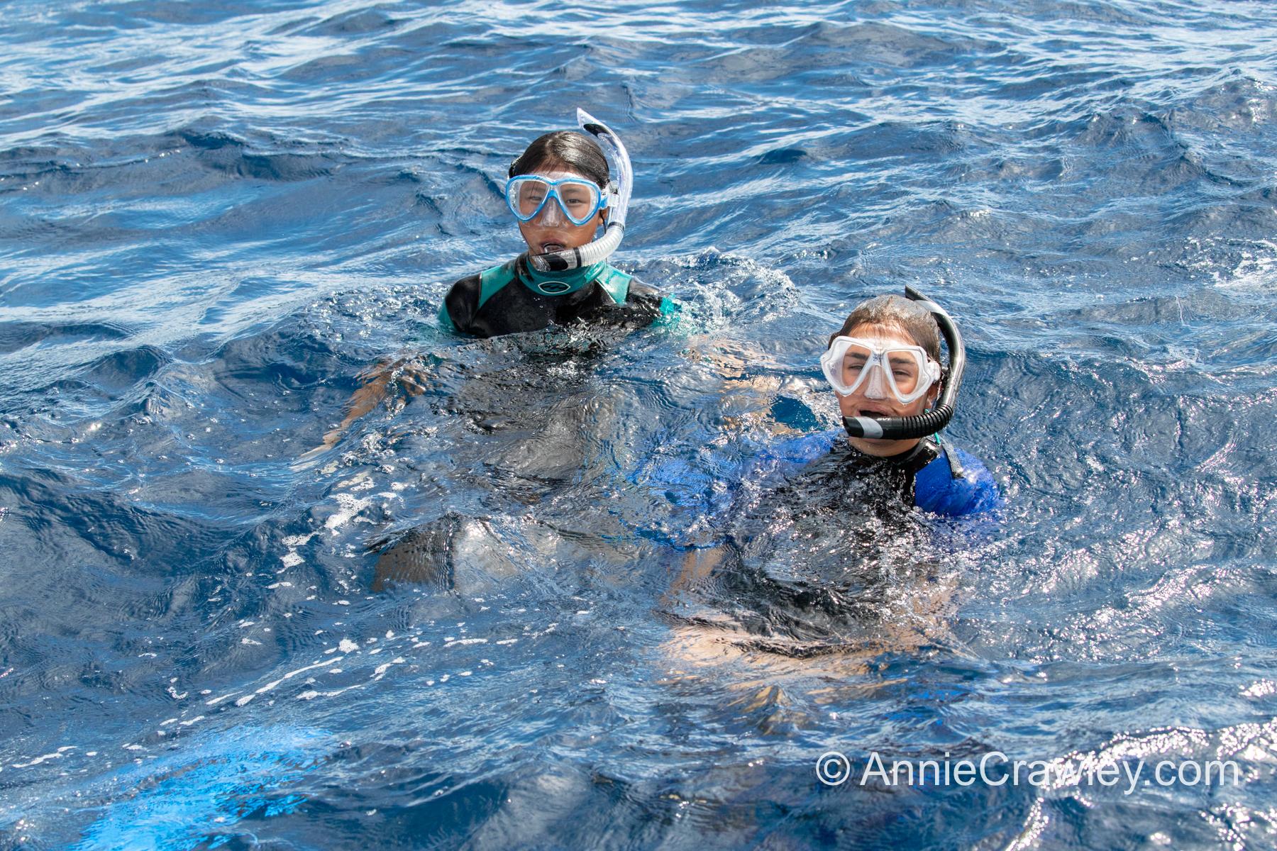 Tonga Humpback Whales Annie Crawley-9898.jpg