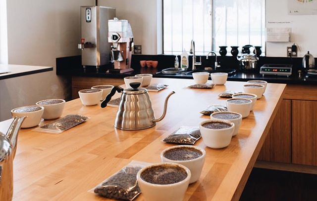We will be cupping Daterra's masterpiece coffees on Tuesday Nov. 12th! This cupping will feature fifteen of their masterpiece coffees that have been utilized in winning multiple barista competitions, including 2018's World Brewers Championship. Get stoked and we'll see you here at 10am! Please RSVP at Corocoffee.com ✨  Participation is free, however this event is intended for coffee industry professionals. For information about cuppings open to the public, please email contact@corocoffee.com.