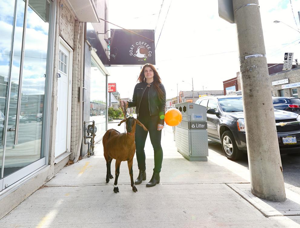 anna goat.jpg