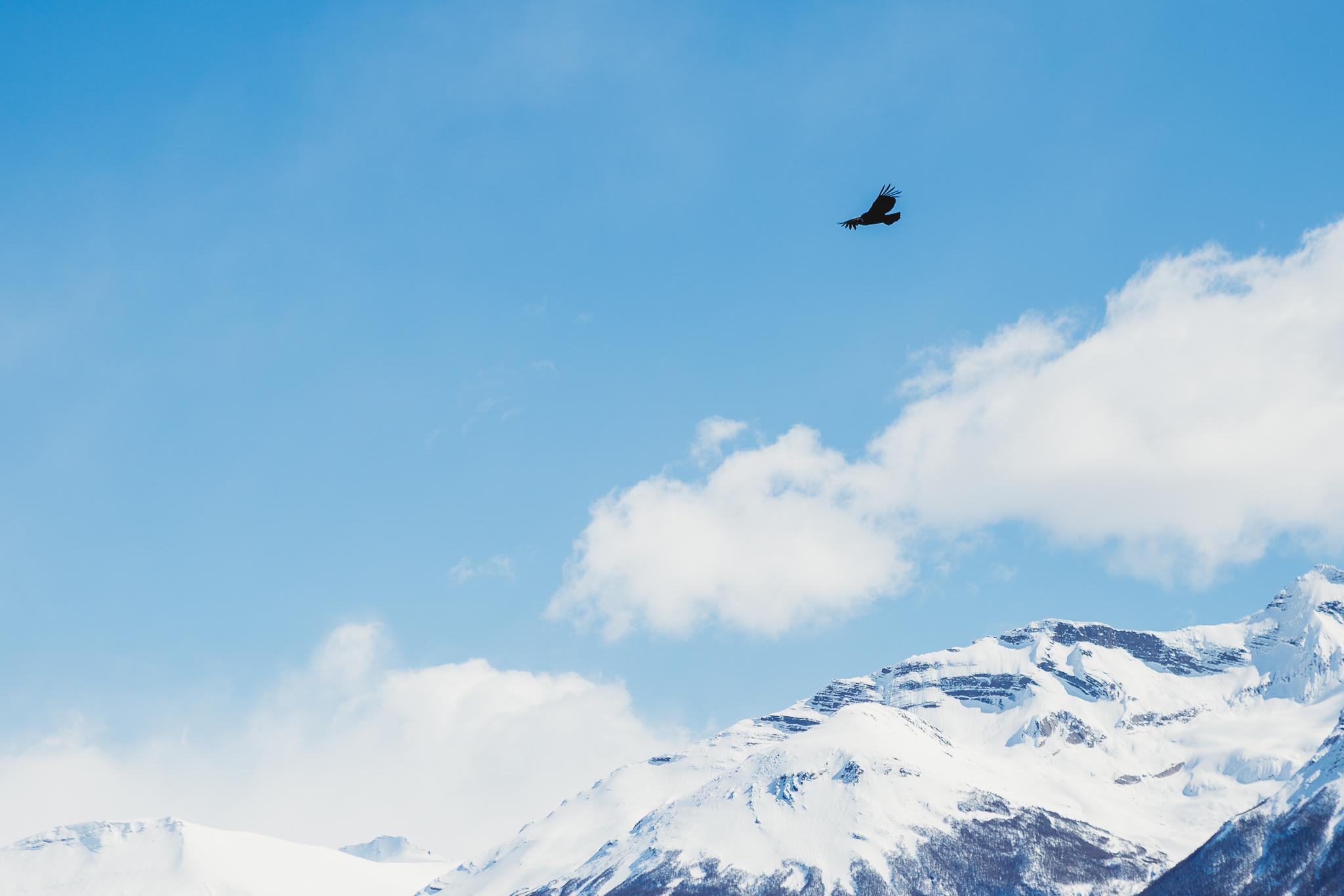 El Calafate, El Chalten, Perito Moreno, Parque Nacional Los Glaciares, Argentina, Buenos Aires-24.jpg