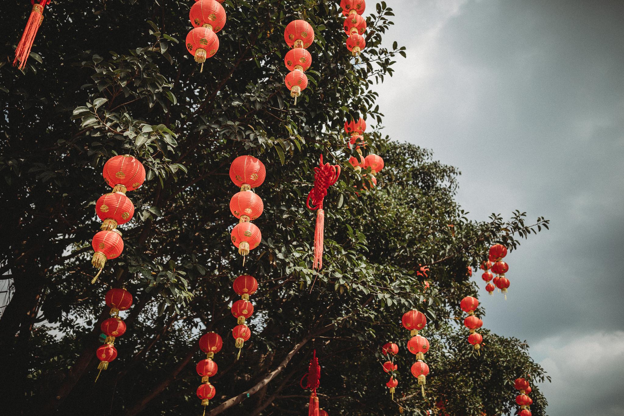 Haixinsha Flower festival, Chinese New Year, Guangzhou China (1 of 20).jpg