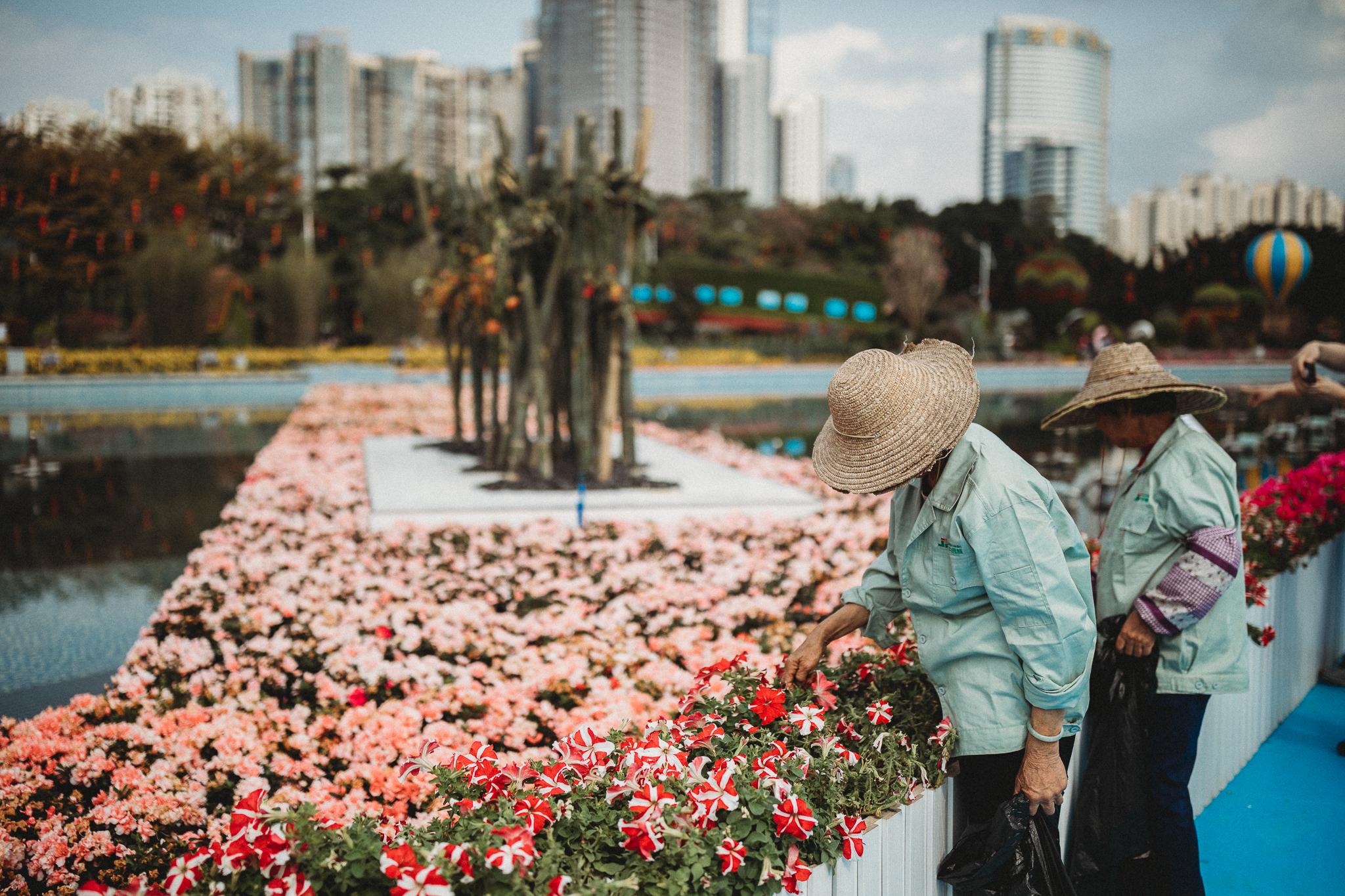Haixinsha Flower festival, Chinese New Year, Guangzhou China (13 of 20).jpg