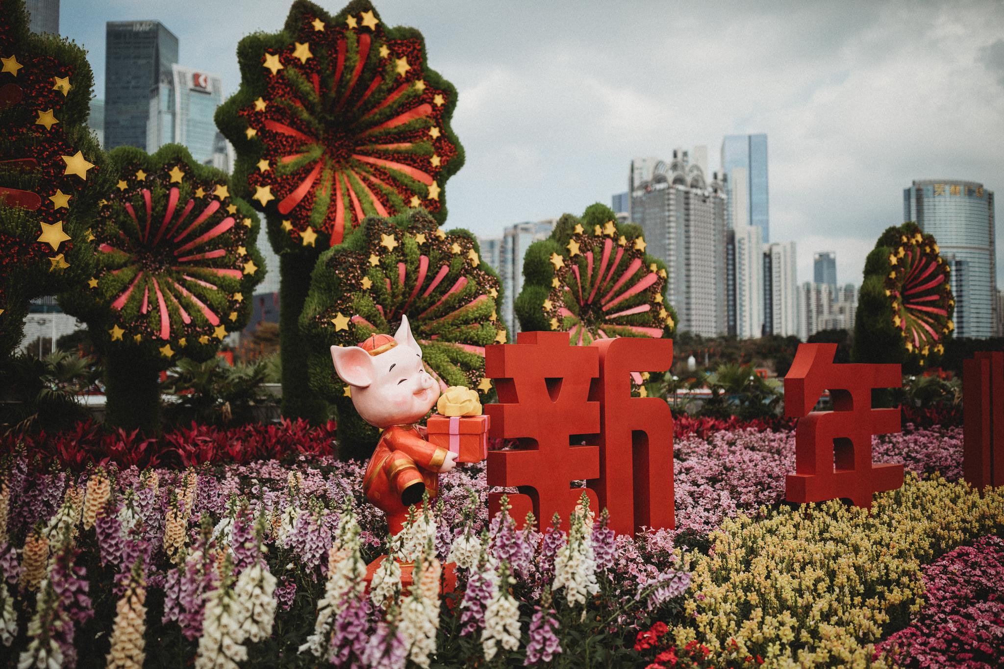 Haixinsha Flower festival, Chinese New Year, Guangzhou China (14 of 20).jpg