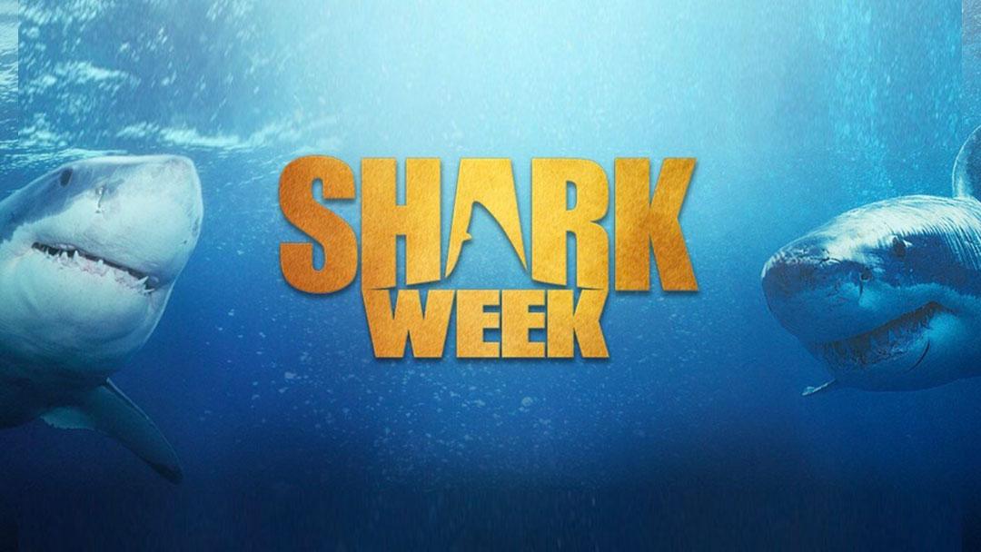 shark-week@2x.jpg