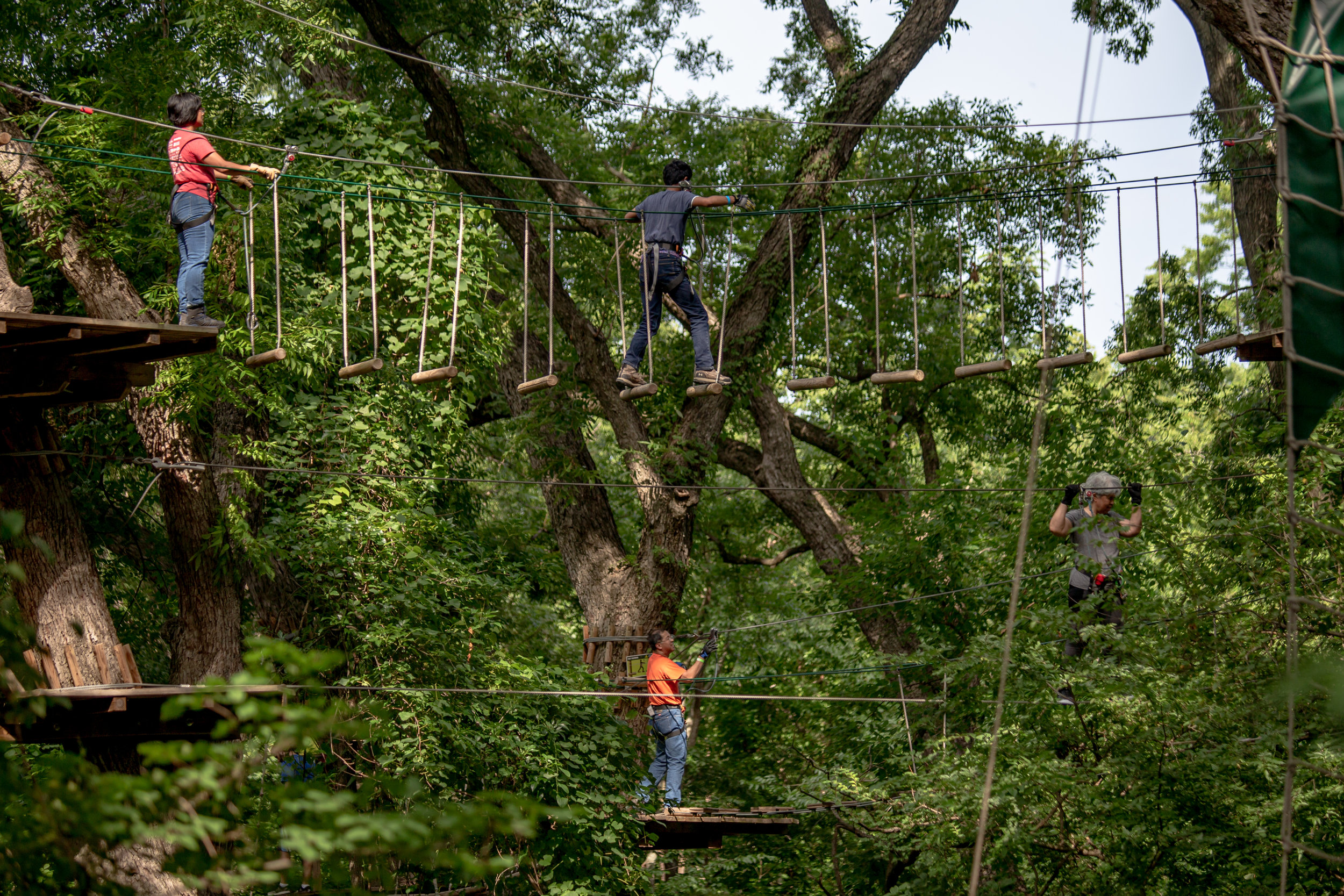 JULY 4, 2109 - LOCAL TEXANS BALANCE AND CLIMB ON TREES AND CABLES AT GO APE CLIMB PARK IN PLANO, TEXAS.