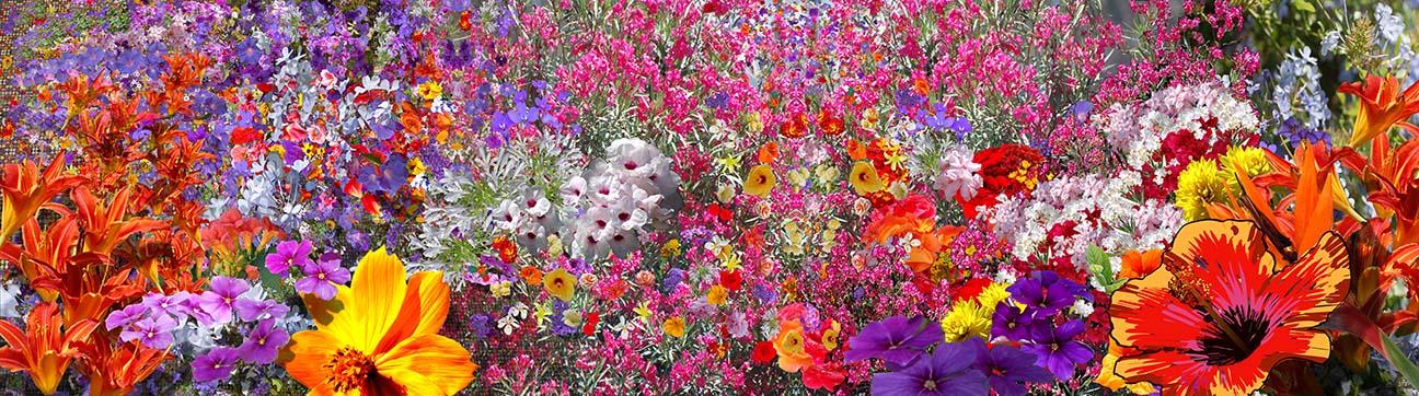 4-flower-tapestry.jpg