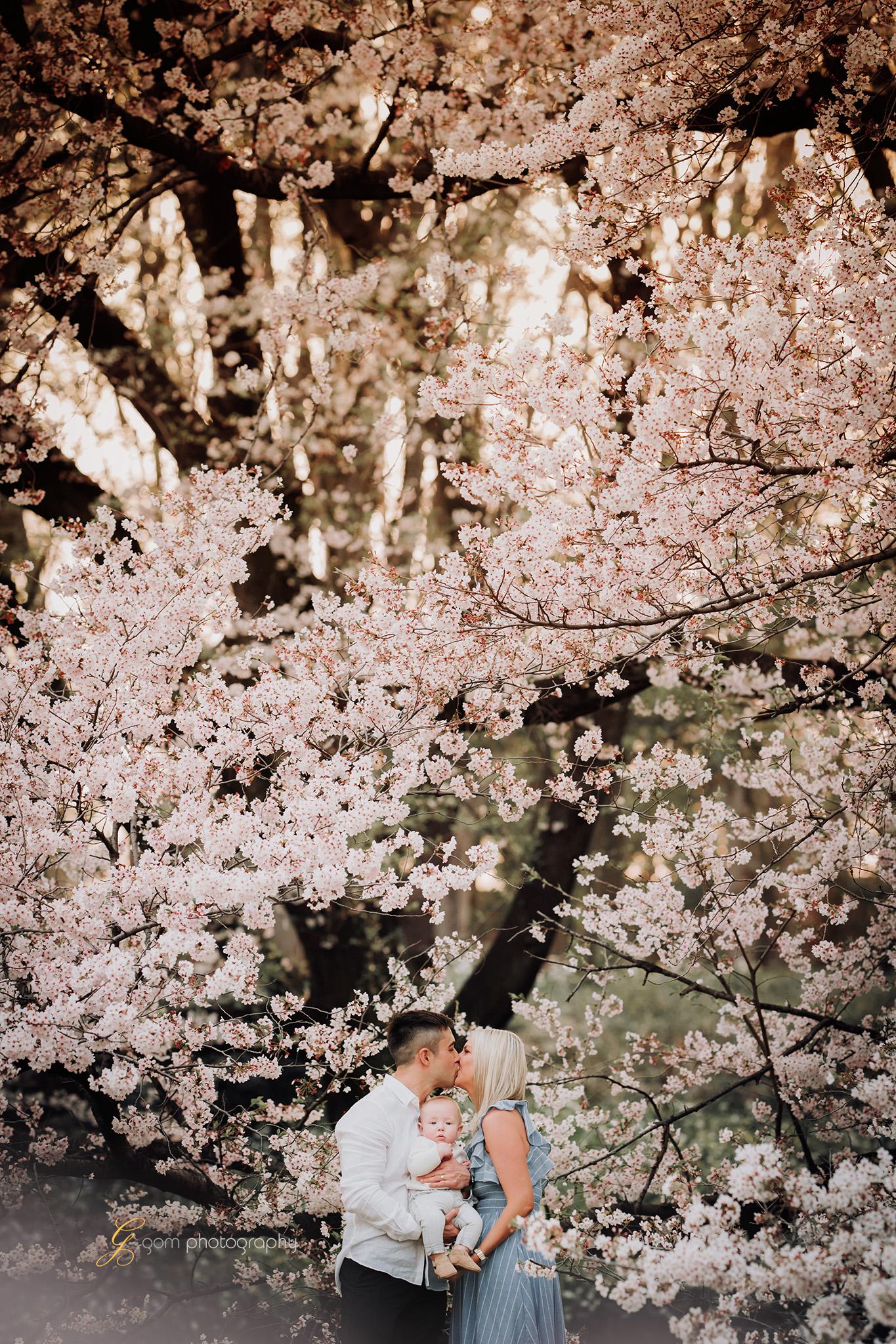 tokyo_photographer_cherry_blossom2