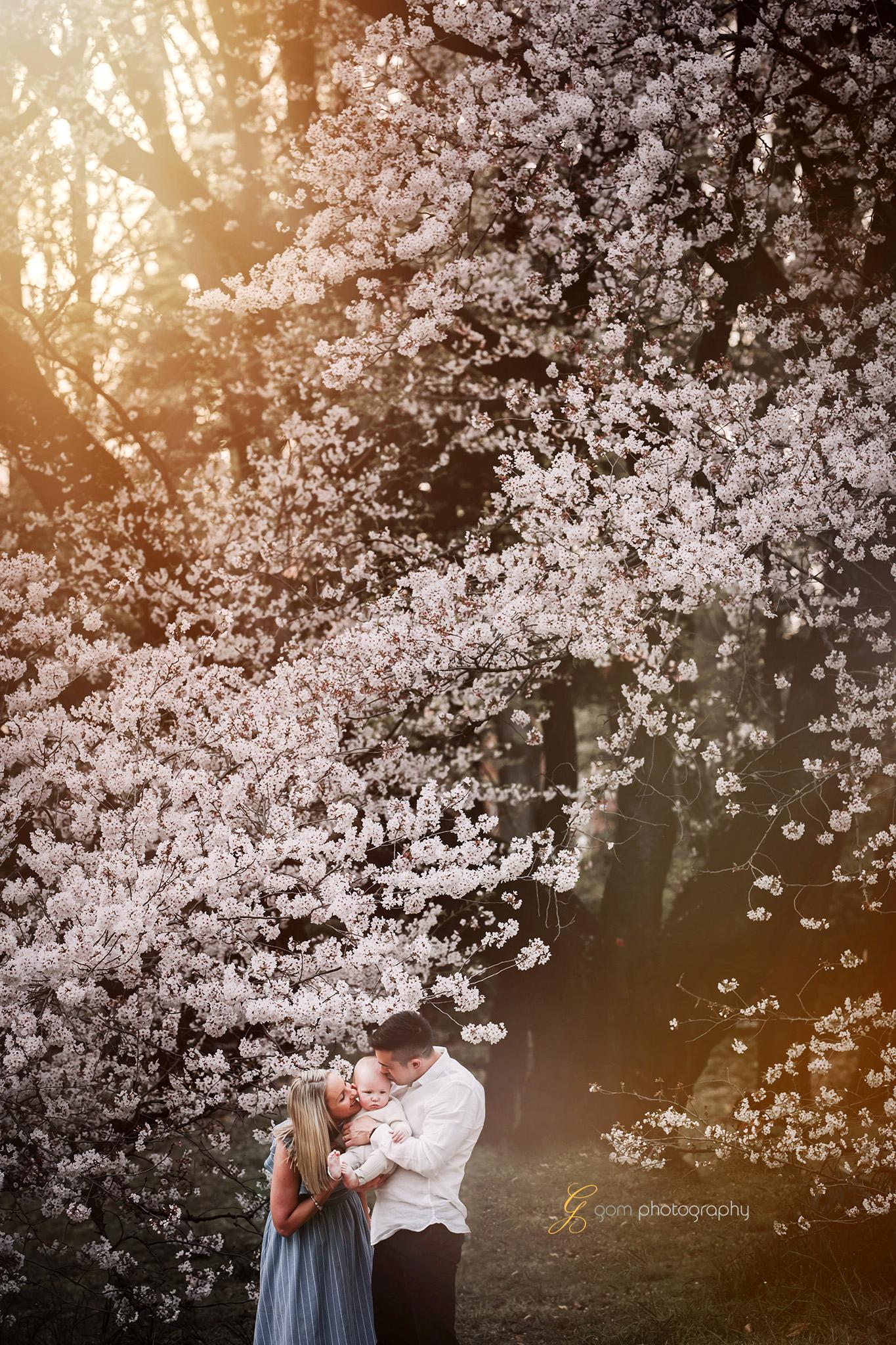 tokyo_photographer_cherry_blossom 4