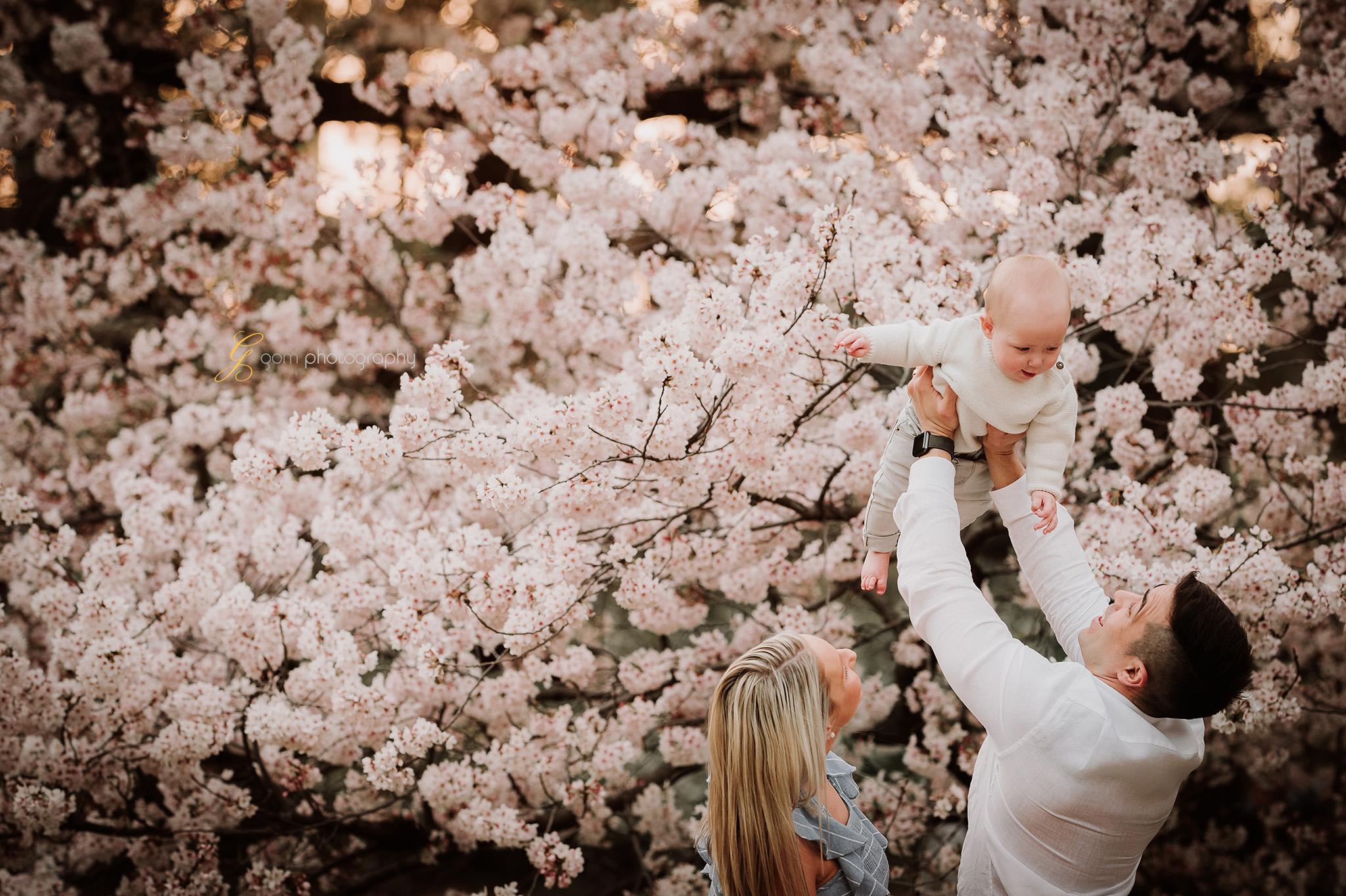 tokyo_photographer_cherry_blossom 5