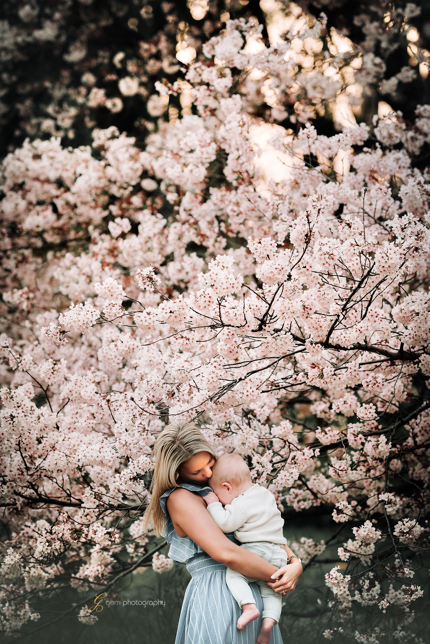 tokyo_photographer_cherry_blossom6