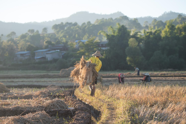 Myanmar-89.jpg