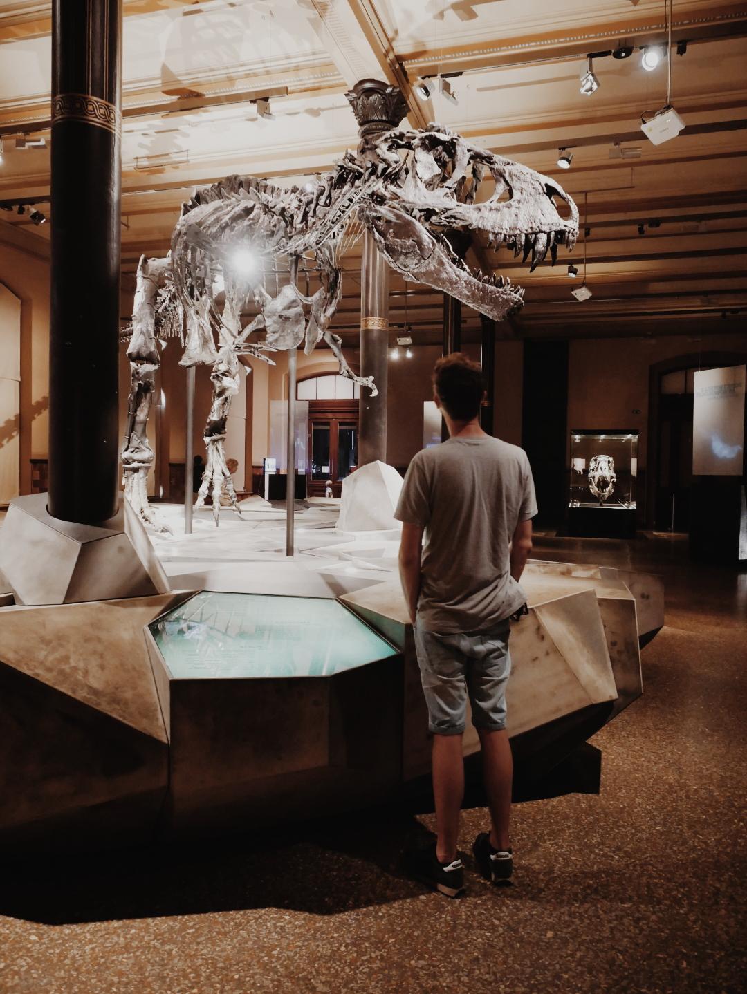 Naturkundemuseum-Berlin.jpg