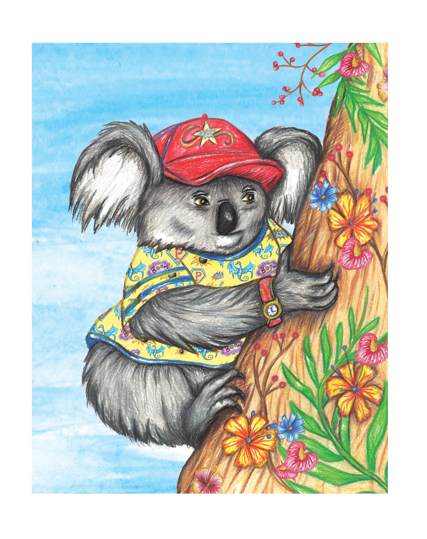 competition koala.jpg