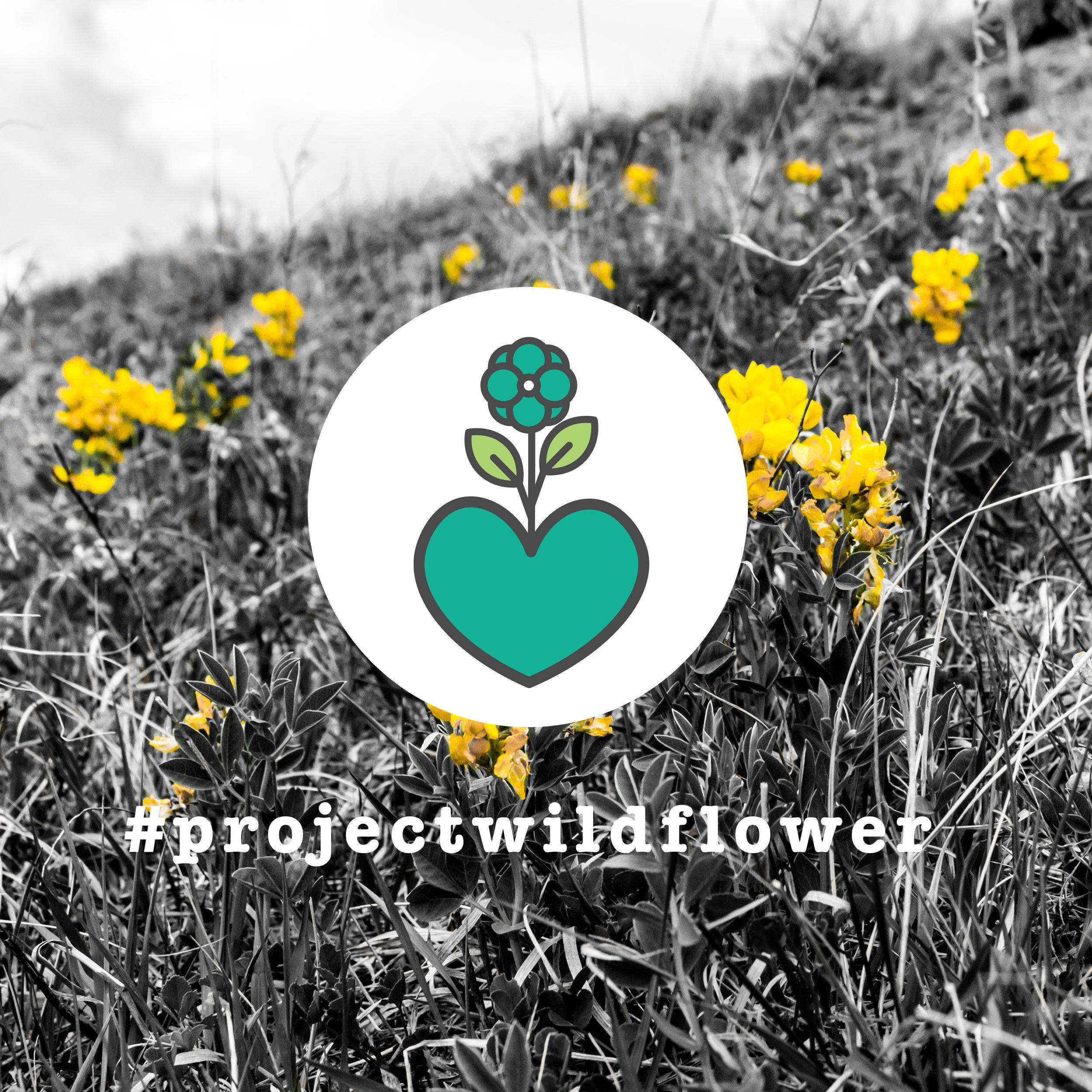 ProjectWildflower-GiveBack.jpg