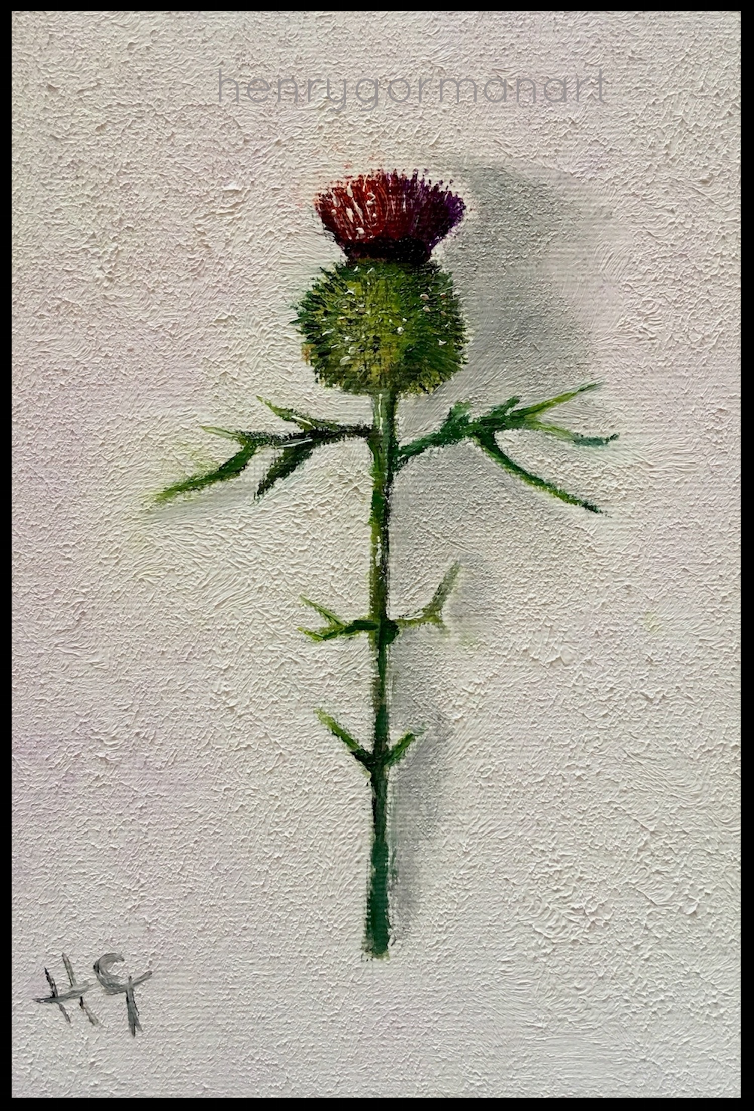 'Wee thistle # 1'