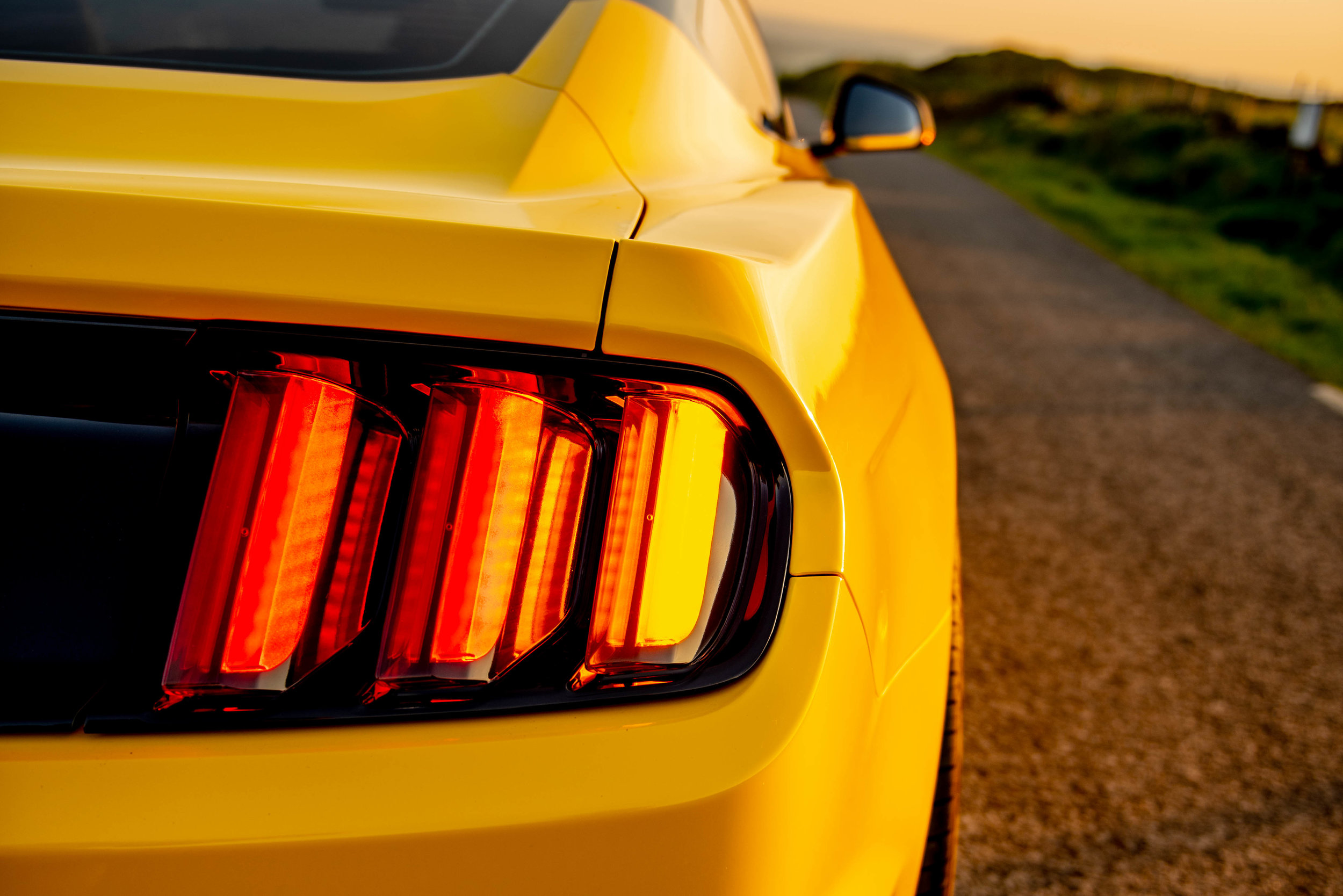 Mustang-14.jpg