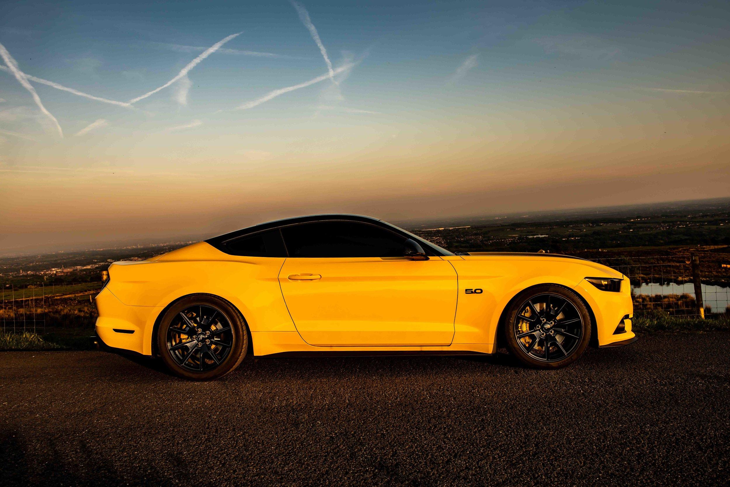 Mustang-15.jpg