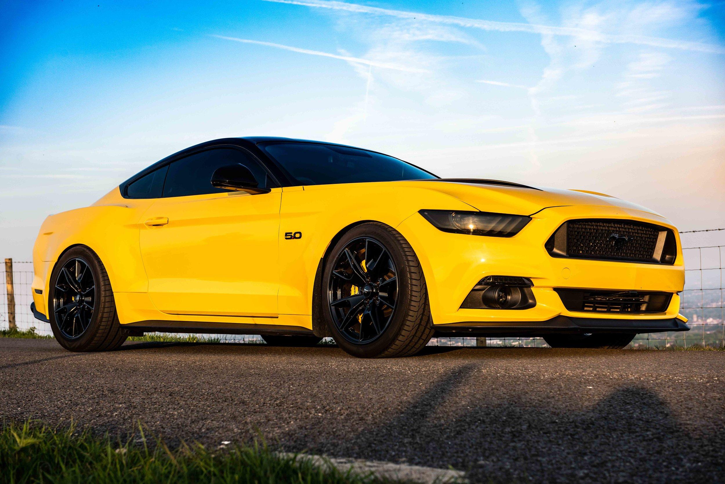 Mustang-17.jpg