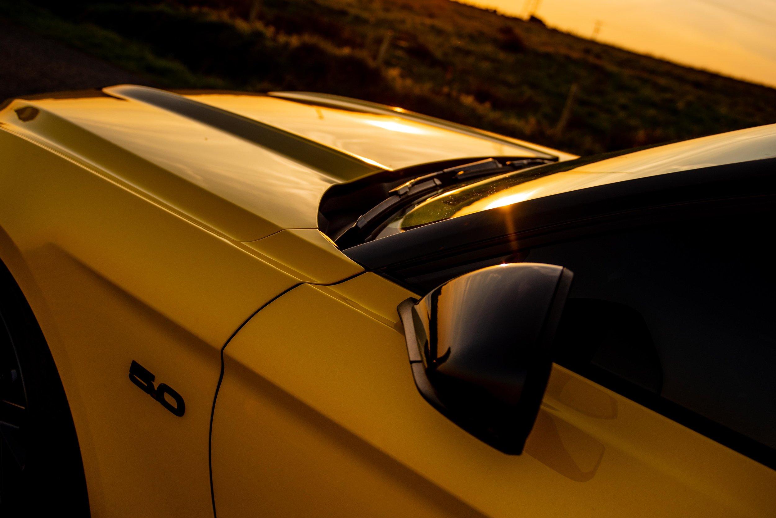 Mustang-18.jpg
