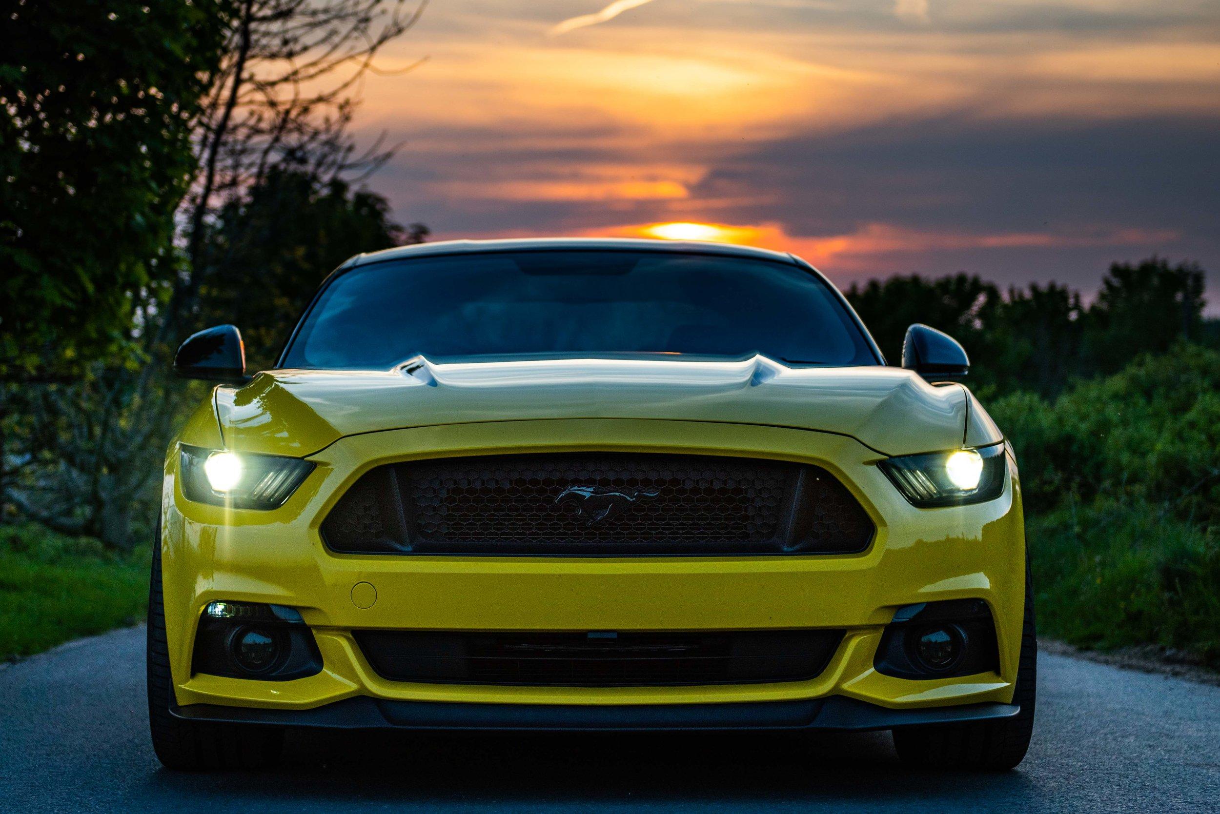 Mustang-22.jpg