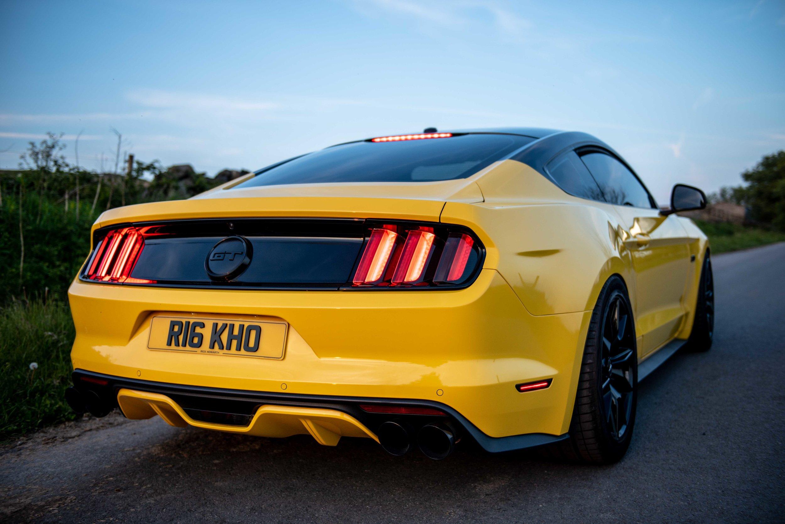 Mustang-25.jpg