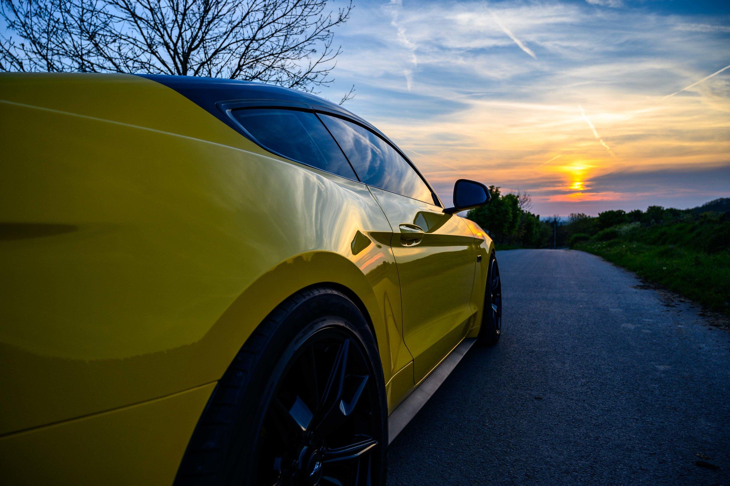 Mustang-27.jpg
