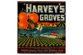 citrus_harveys groves.jpg