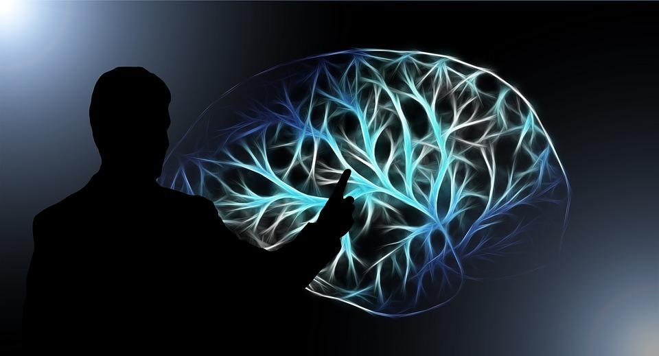 brain-3141247_960_720.jpg