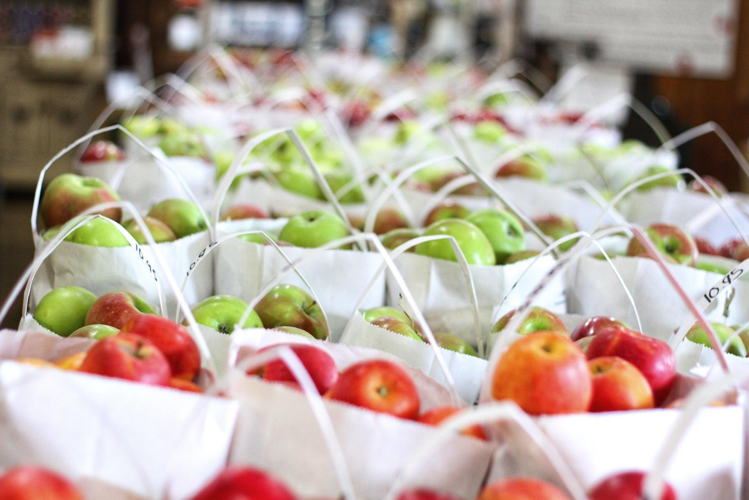 apple-apple-season-apples-1468432.jpg