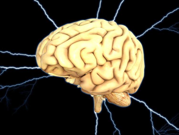 brain-1845940_1920.jpg