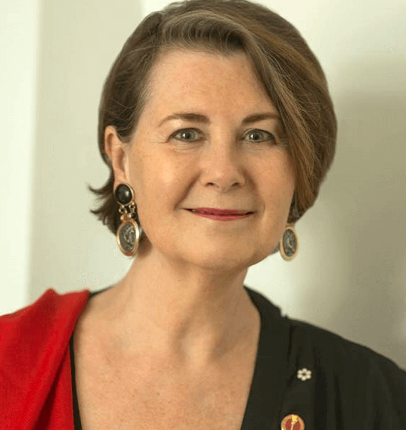 Senator Marilou McPhedran   Human rights lawyer. Professor and activist. Independent senator, Parliament of Canada. Co-founder of several internationally recognized non-profit Canadian organizations.   More about Marilou »