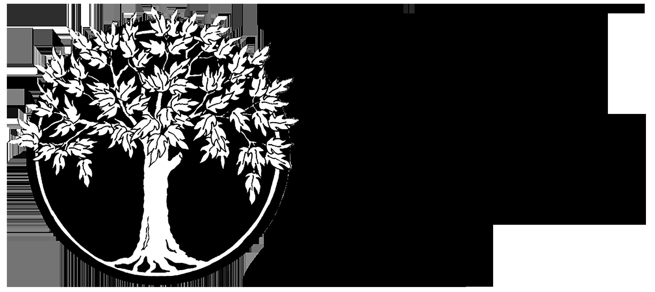 pnwg logo grey.black large.png