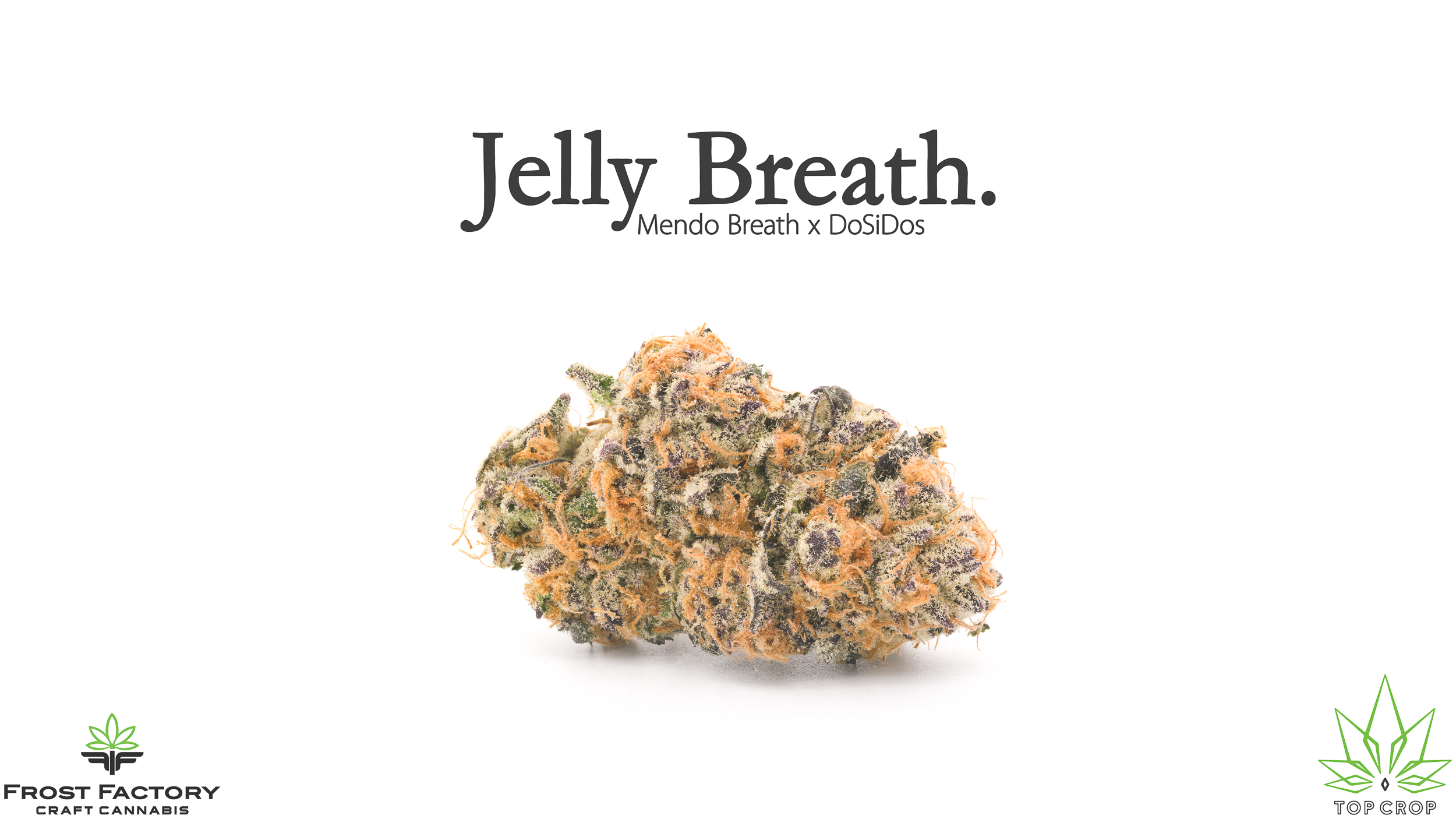 Jelly Breath 16.9.jpg
