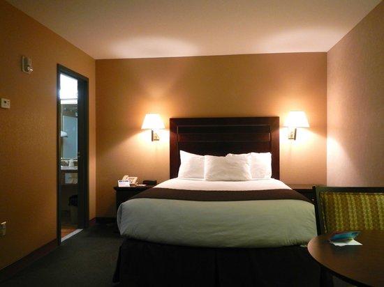 Comfy beds -