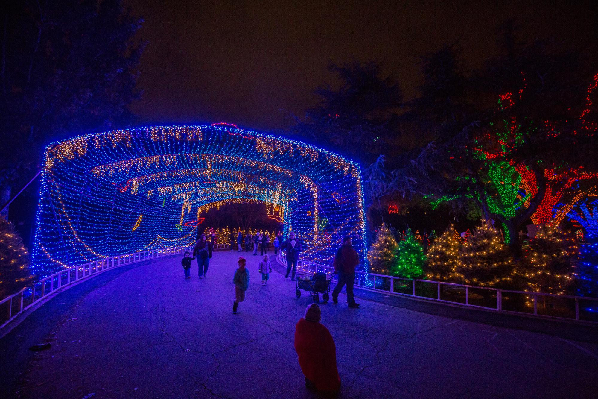 Photo courtesy of Austin Trail of Lights