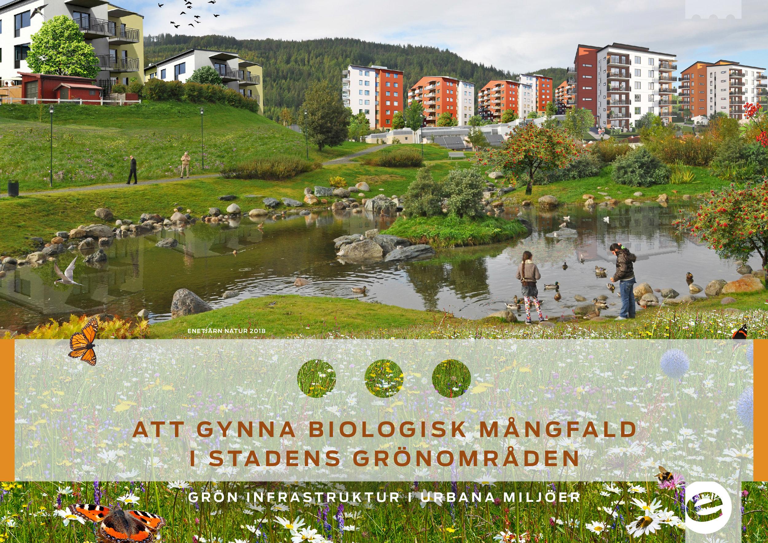 Handbok om att gynna biologisk mångfald i stadens grönomräde