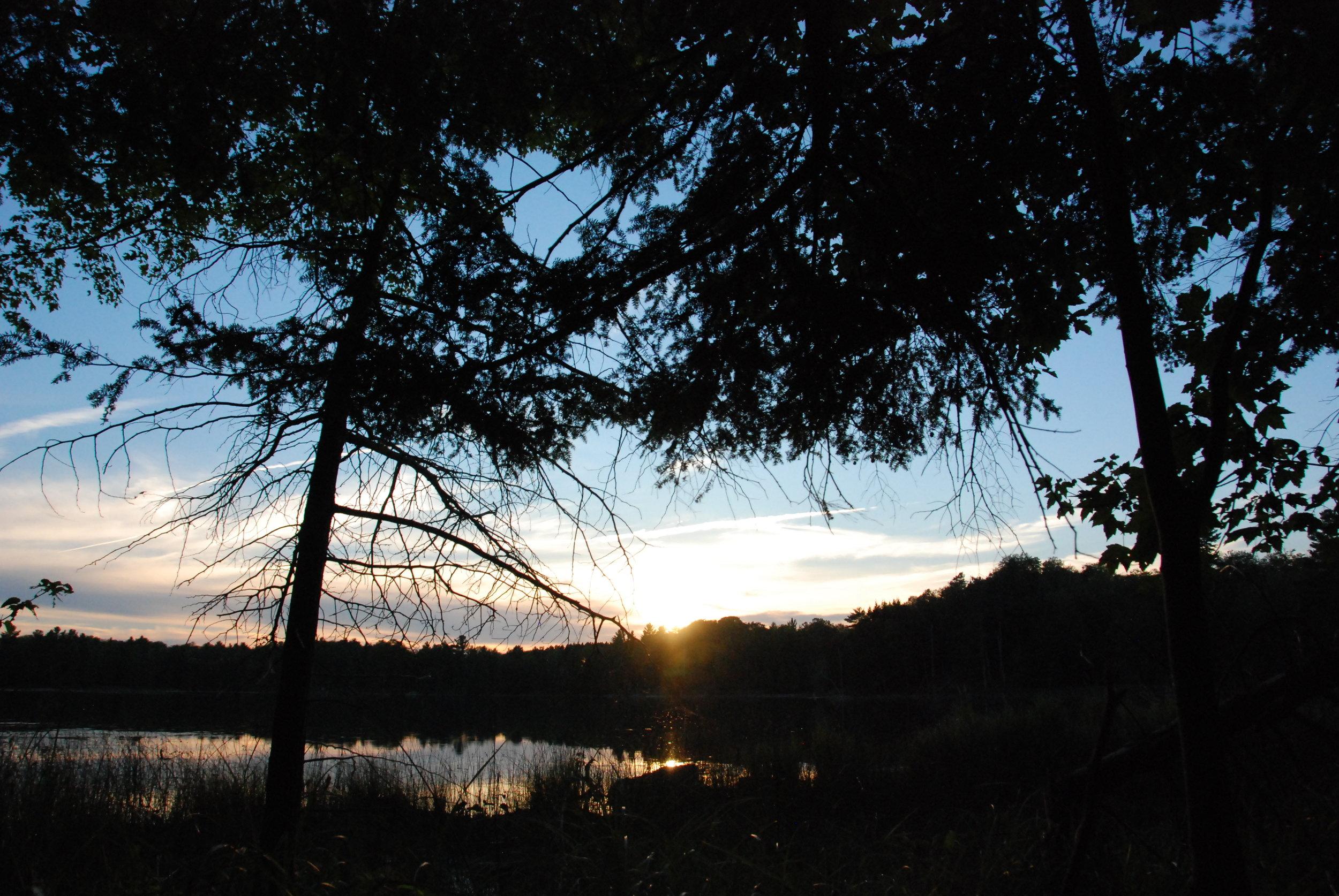 Beautiful light on the lake!
