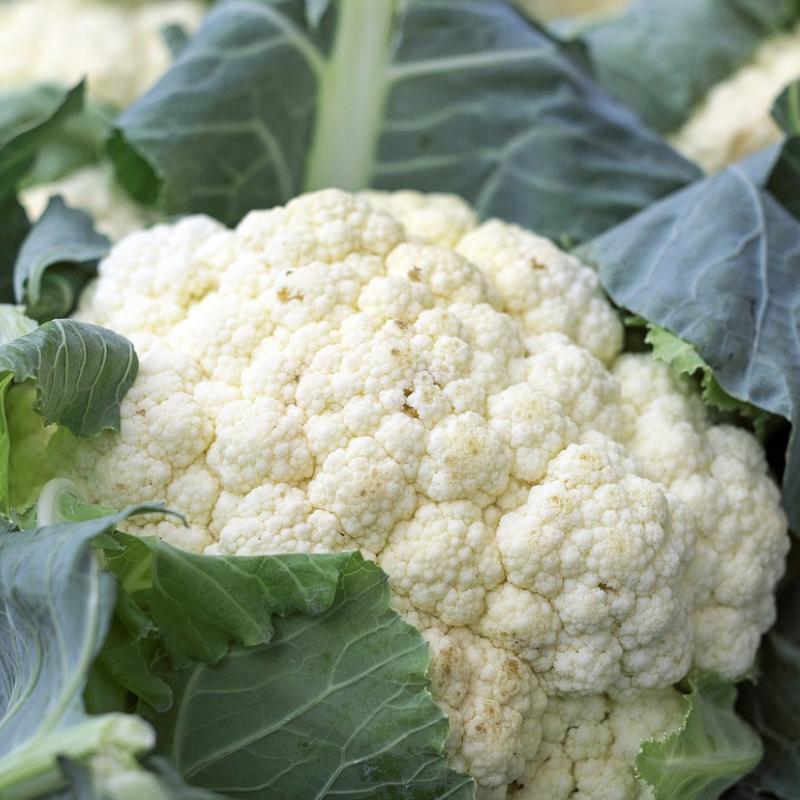 Cauliflower -